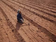 La ONU contará con 5 científicos españoles en sus informes de cambio climático