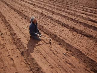 Desertización en China