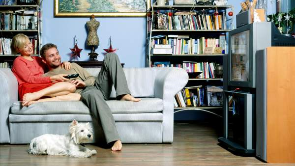 Un perro viendo la tele