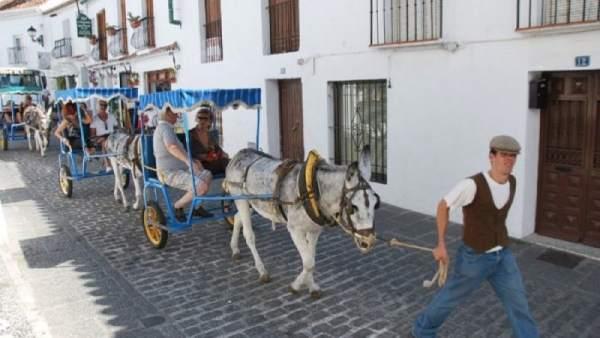 Burros taxi en Mijas