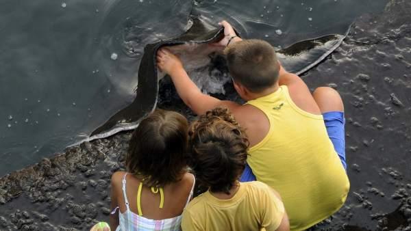 Sebastián y los niños en La Gomera