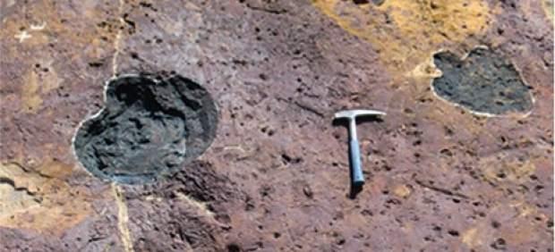 Huellas fósiles halladas en el Pirineo