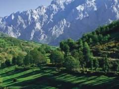 Picos de Europa, el Parque Nacional del verano