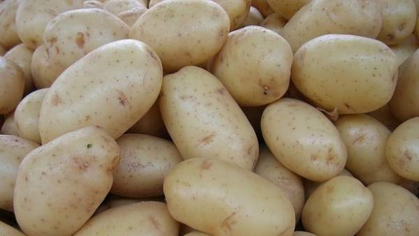 Descubren un extracto de patata que puede combatir el sobrepeso