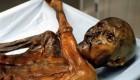 Ötzi, el 'hombre de hielo', fue asesinado a traición