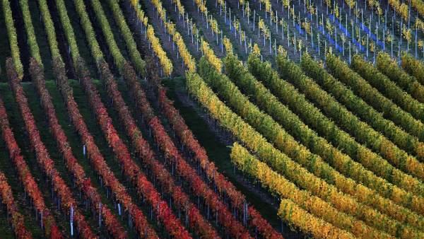 Colores otoñales en Alemania