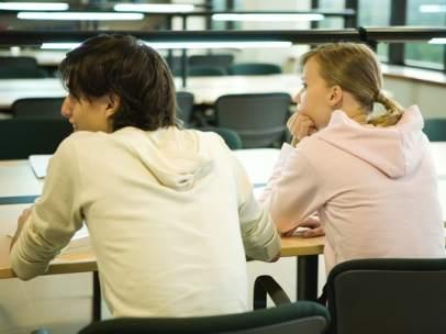 Erasmus universitarios