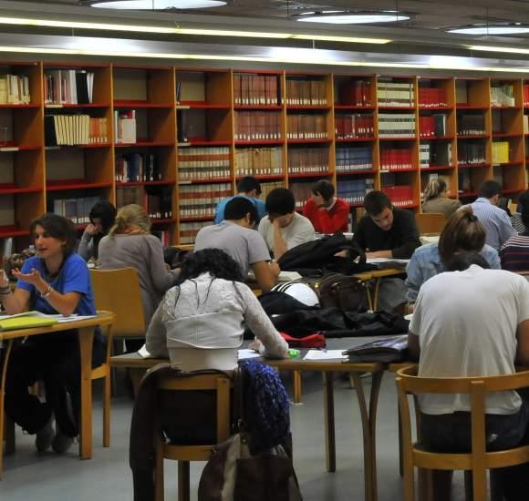 alumno estudiando biblioteca