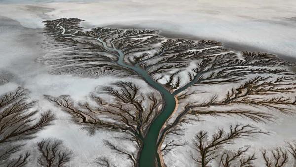 Colorado River Delta #2, Near San Felipe, Baja, Mexico, 2011