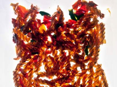 'Four Colored Bellpeppers Pasta'