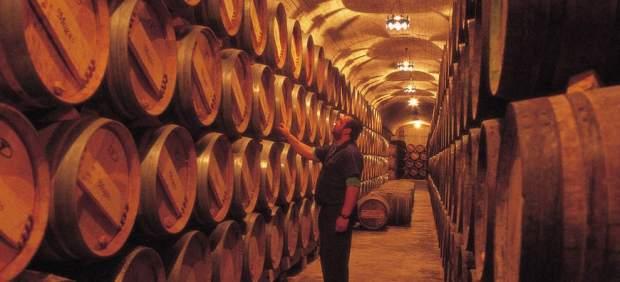 Cinco planes para recorrer y descubrir la Rioja Alta