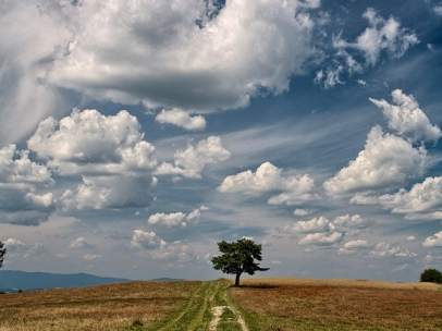 Hay nubes de todas formas y tamaños, que han inspirado a poetas y pintores, pero apenas las miramos.