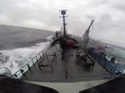 Choque entre ballenero y activistas de Sea Shepherd