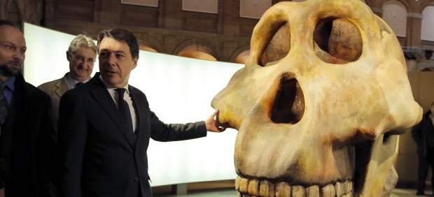 Exposición La Cuna de la Humanidad impresión 3D