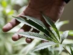 Canadá legalizará el consumo de marihuana en 2018
