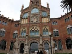Barcelona atesora 24 ubicaciones con hasta 155 palmeras centenarias