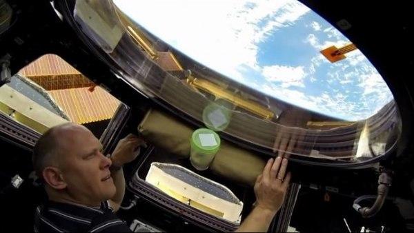 Un tripulante observa la maniobra de evasión de la ISS