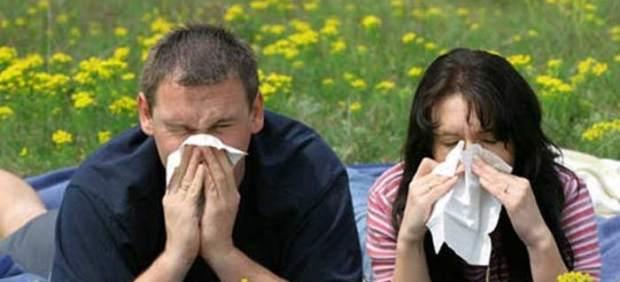 La primavera será moderada en el centro peninsular para los alérgicos al polen