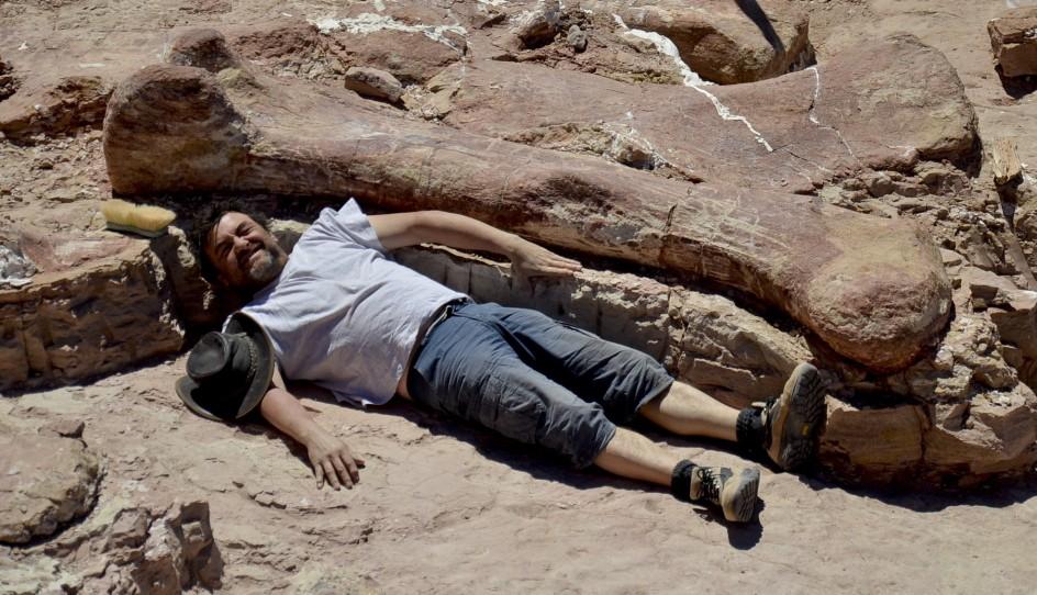 Restos del dinosaurio más grande jamás encontrado