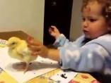 'La que ha liado el pollito'