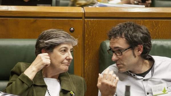 Los parlamentarios de EH Bildu Laura Mintegi y Julen Arzuaga.