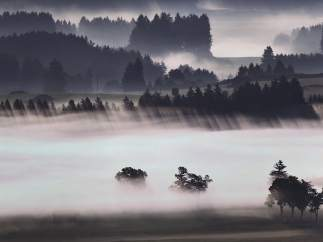 Amanece entre la niebla en Alemania