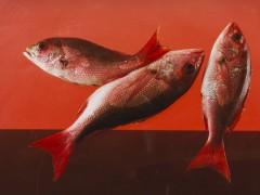 Elad Lassry,  Red Snapper, 2010