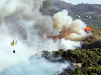 Incendio en Sierra Nevada