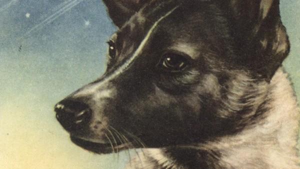 Postcard, USSR (1958)