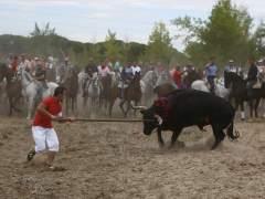 El Club de la Lucha denunciará la fiesta del Toro de la Vega