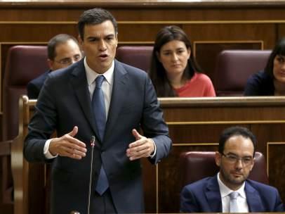 Pedro S�nchez