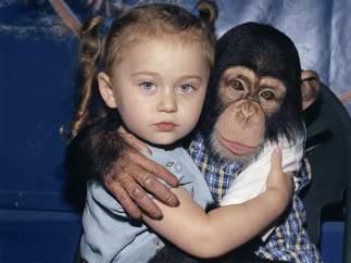 'Amelia & the Animals'