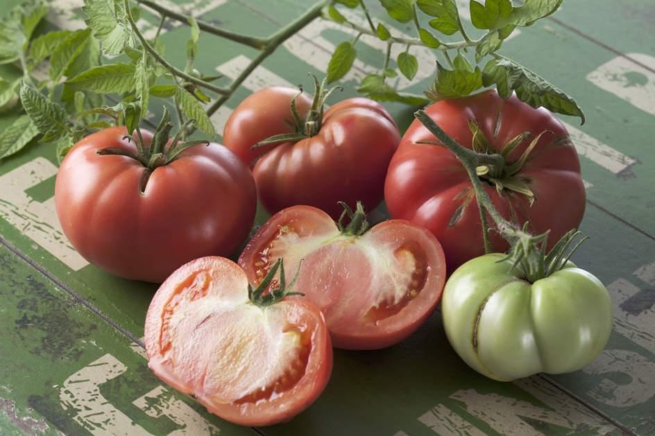 Rosa o de buey kumato o raf algunos tomates pata negra for Asociacion de cultivos tomate