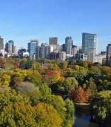 Panorámica del 'downtown' de Boston: parque y rascacielos al fondo.