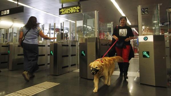 Barcelona 'abre' el metro a los perros