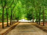 En el parque Pradolongo