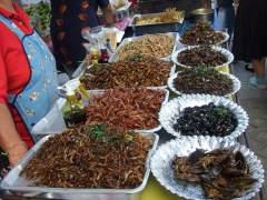 Tailandia se prepara para exportar a la UE insectos para su consumo