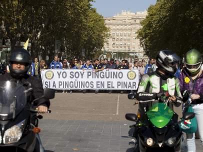 Protesta de 'ping�inos' en Valladolid
