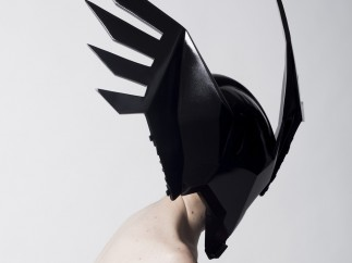 Rein Vollenga, Untitled (Wings), 2013,
