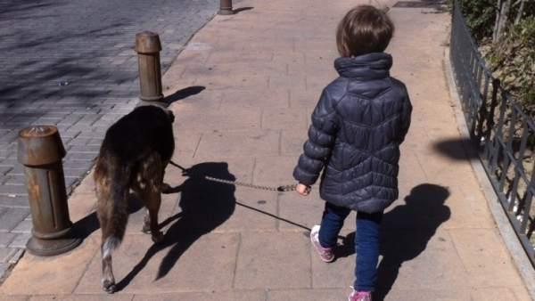Paseo con el perro