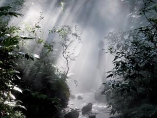 Tales of Ugetsu, Fogfalls