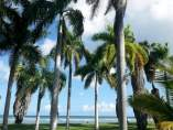 Jamaica: Playas de Montego