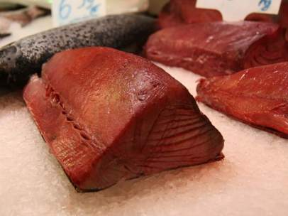 Atún rojo