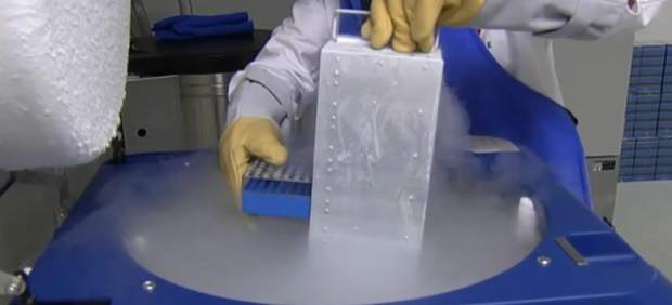 Banco privado de células madre