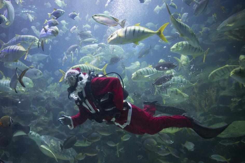 Papá Noel lleva la Navidad al fondo del mar