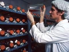 Logran anticuerpos humanos específicos en laboratorio