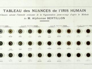 Bertillon, Alphonse, Instructions Signaletiques Album; Melun: Imprimerie Administrative, 1893. Folding plate at the end of the book: 'Tableau des Nuances de l'Iris Humain'.