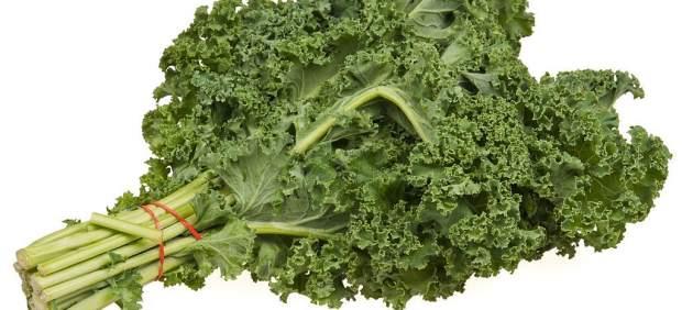 Kale, berza o col rizada