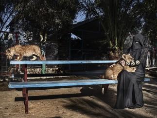 Zoológico de Gaza - Tanya Habjouqa