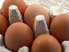 Por qué es recomendable comer un huevo al día